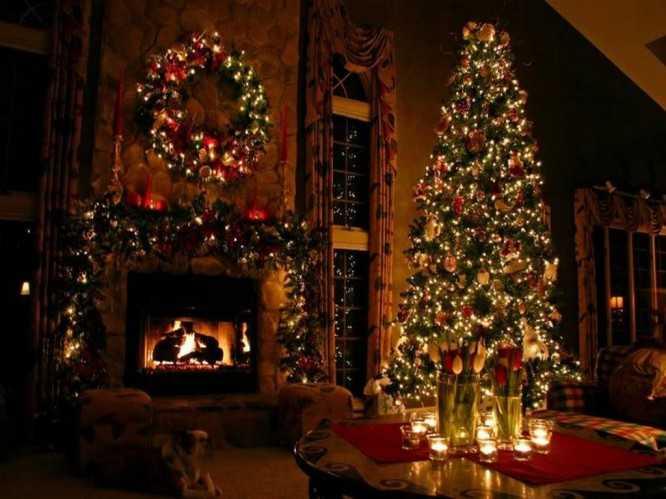 beautiful-christmas-trees-free-beautiful-christmas-tree-wallpaper-download-the-free-66576-666x499